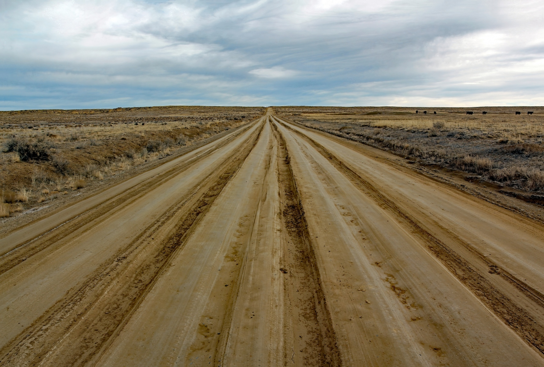 A heavily rutted road near Chaco Canyon in Nageezi, NM