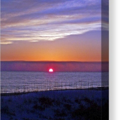 1_magenta-in-the-sky-jennifer-robin-canvas-print